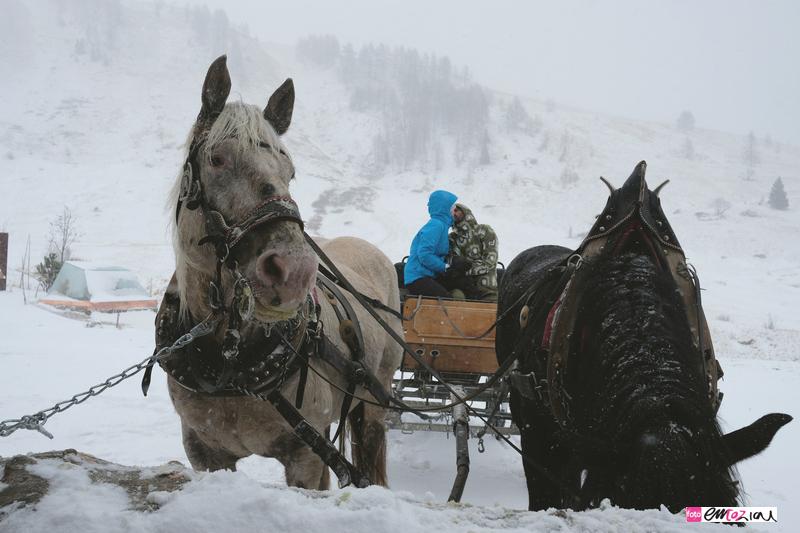 destination-wedding-photographer-Dolomites-valdifassa-italy-3