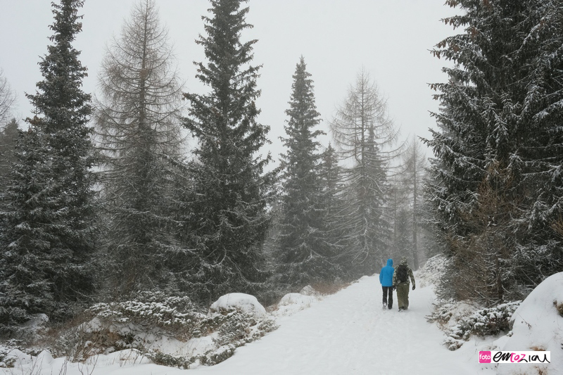 destination-wedding-photographer-Dolomites-valdifassa-italy-FUCIADE_4