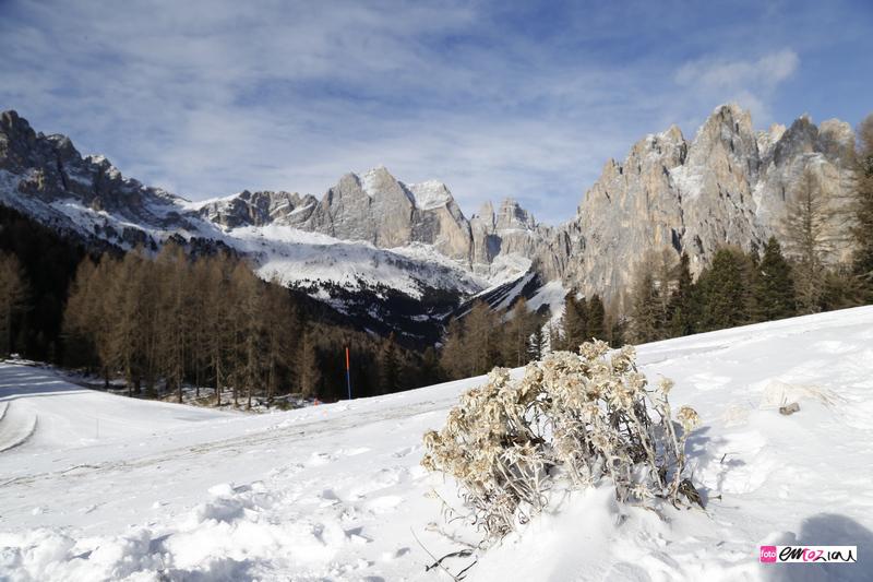 destination-wedding-photographer-Dolomites-valdifassa-italy_ciampedie-vigo